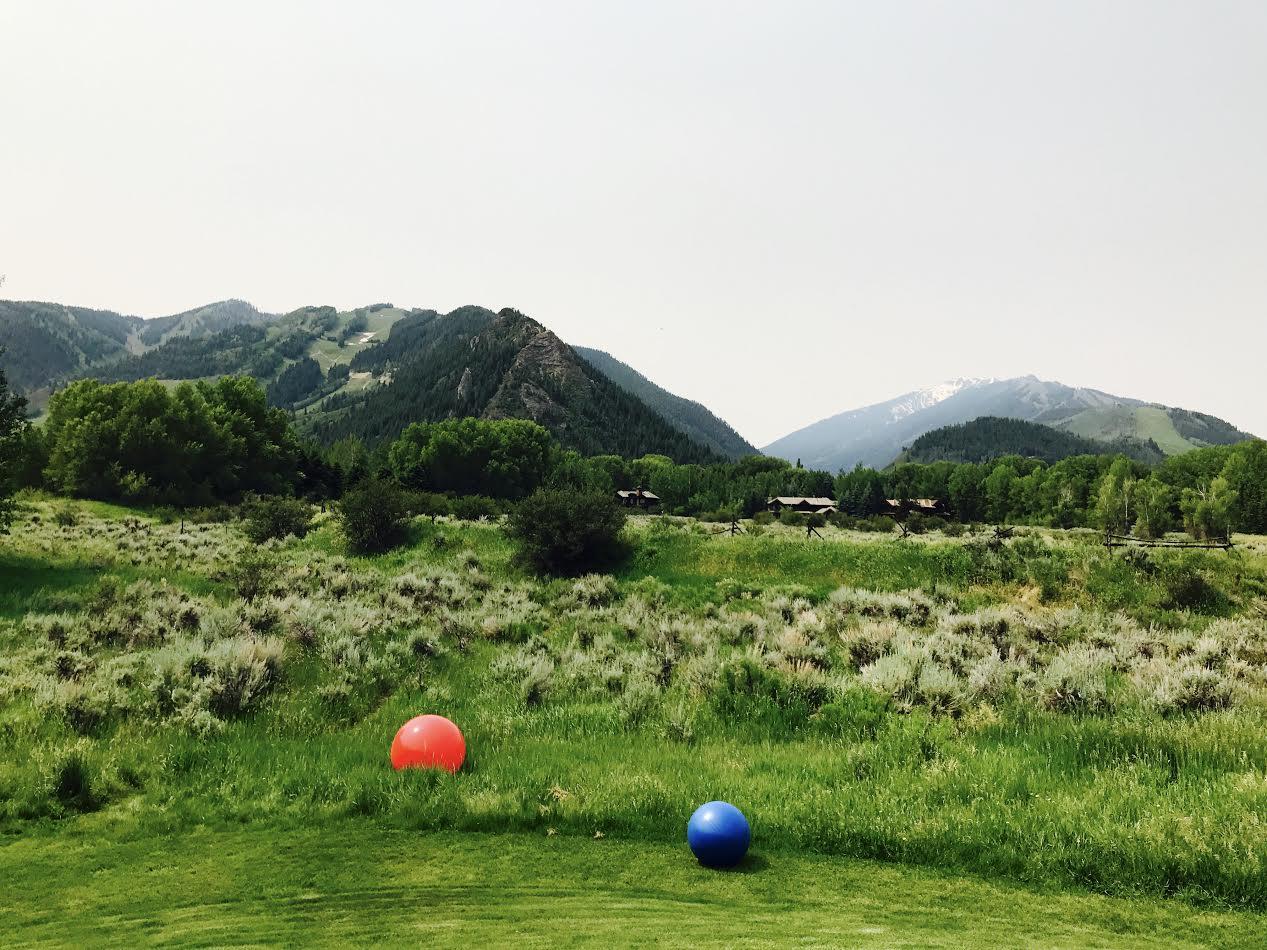 balls on lawn